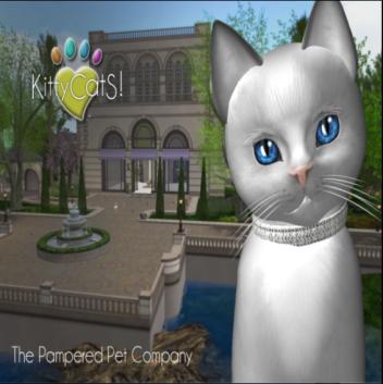 KittyCatS - Snowman Contest Area