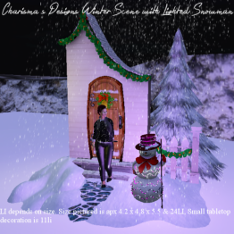 Charisma's Designs Winter Scene with Lighted Snowman PIC