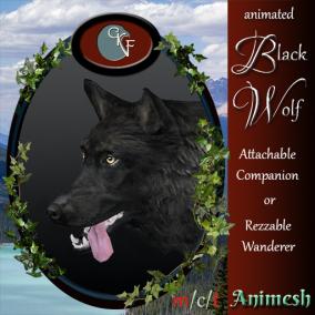 CKitFalconry_512x512_BlackWolf_pic
