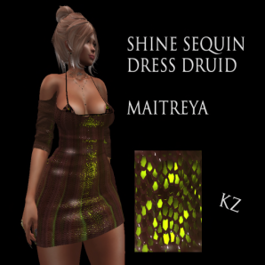KZ shine sequin dress Druid
