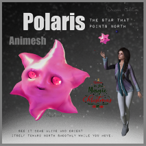 Polaris , The star that points north