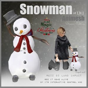 Snowman Mini Animesh